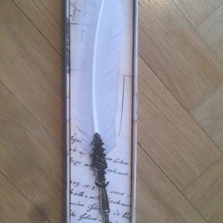 Különleges nagy penna díszes tollszárral díszdobozban